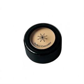 Кремовый консилер для лица Missha The Style Perfect Concealer